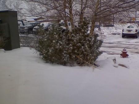 snowy-work-3